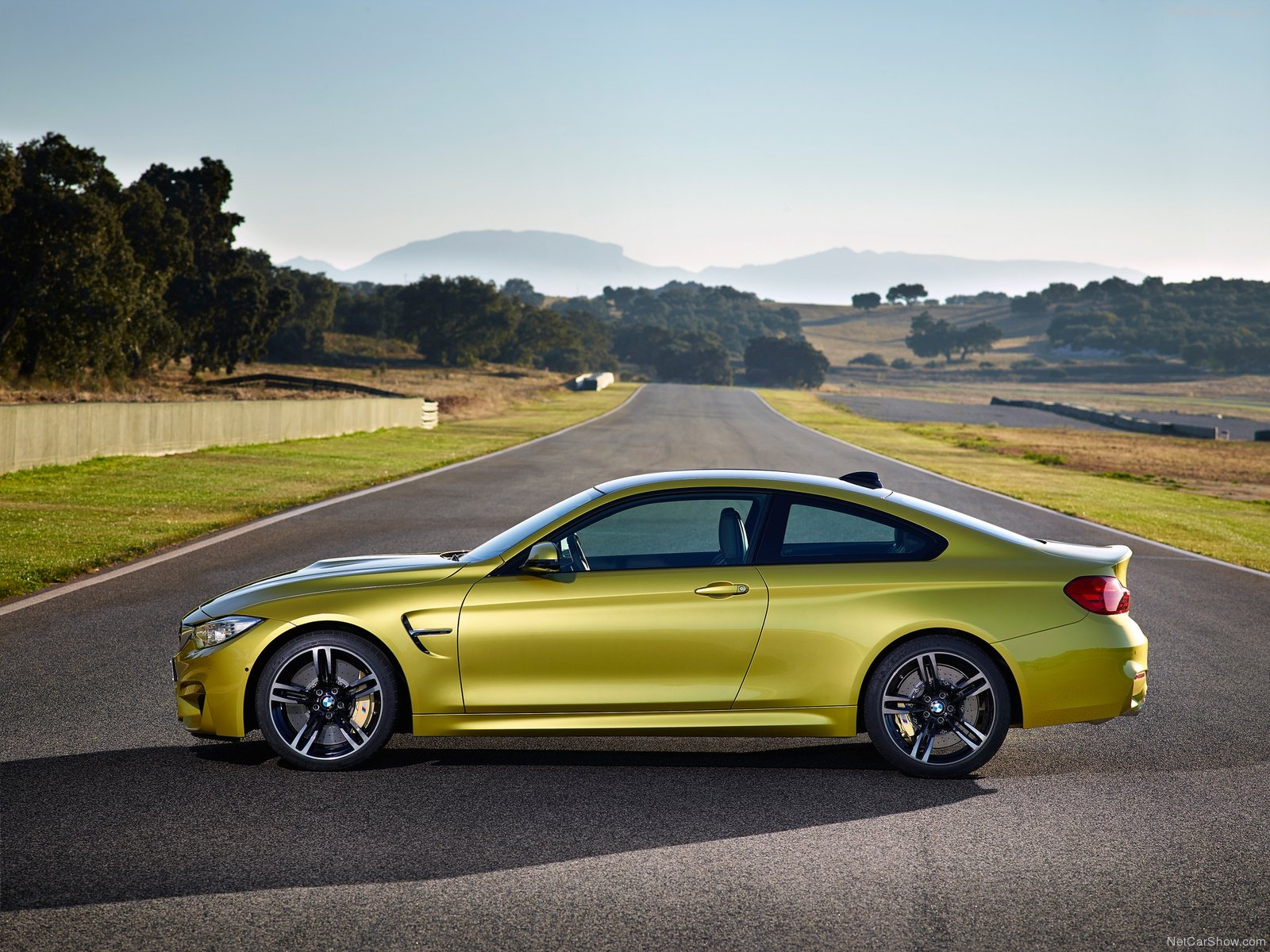 BMW-M4_Coupe-2015-1600-2a.jpg